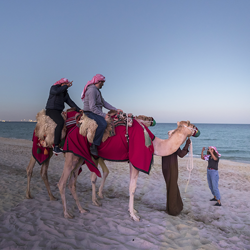 People riding camels on the beach